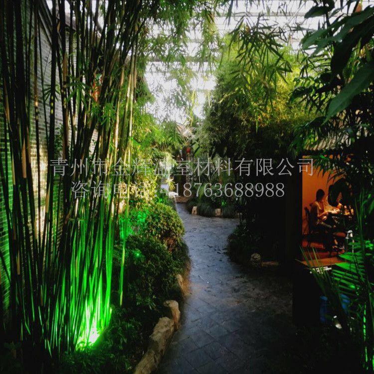 生态餐厅43