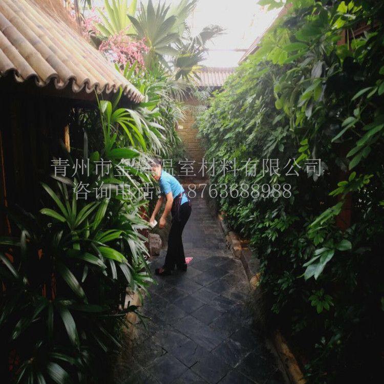 生态餐厅45