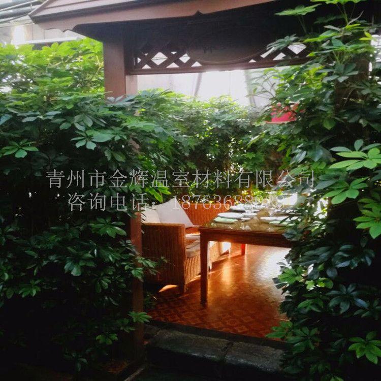 生态餐厅46
