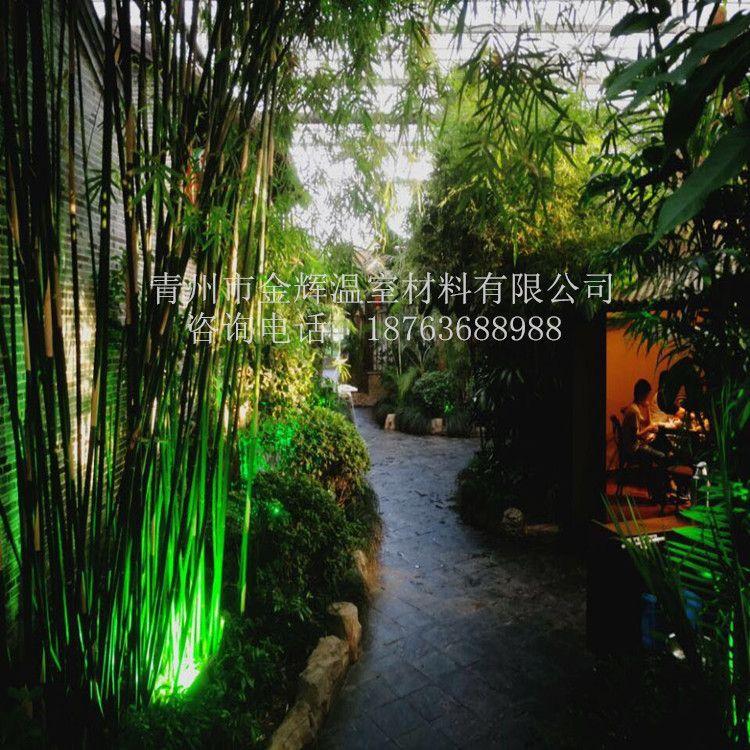 室内园林景观51