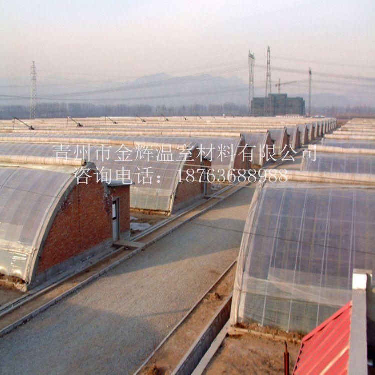 日光温室11