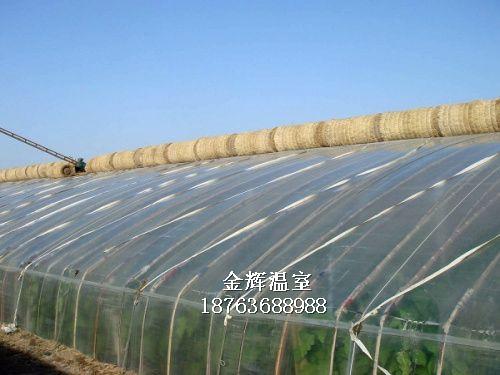 温室大棚建设3
