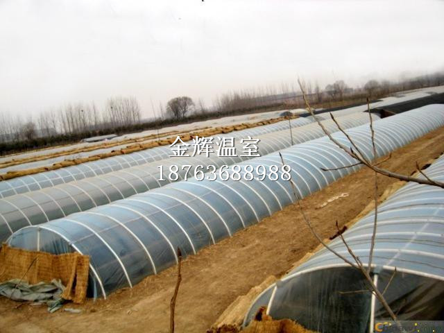 温室大棚建设4
