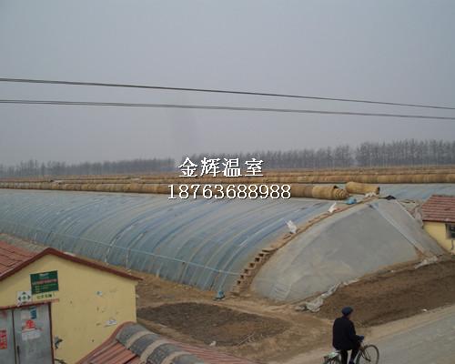 蔬菜大棚建设2