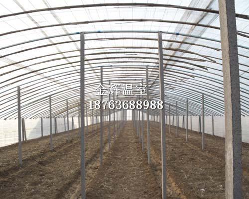 蔬菜大棚建设3
